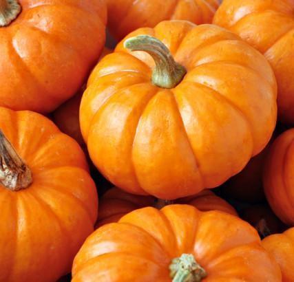 Pumpkin-Smoothie-3-427x410_grande